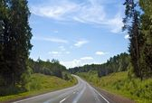 Forest Highway — Stock Photo