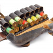 Vintage Ammunition Belt — Stock Photo #6426742