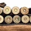 Stock Photo: Vintage Ammunition Belt