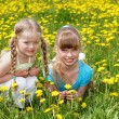 Children lying in field with flower. — Stock Photo
