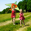 Kids flying kite outdoor. — Stock Photo #5908649