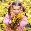Kid in autumn orange leaves. — Stock Photo #6102051