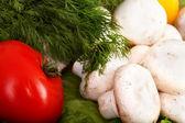 Grupo de verduras y setas con eneldo. — Foto de Stock