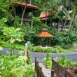 Healh resort in rainforest. Ecotourism. - Stock Photo