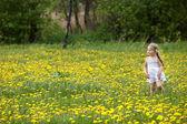 маленькая девочка на траве в цветок. — Стоковое фото