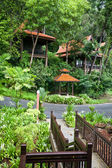 Healh resort in rainforest. Ecotourism. — Stockfoto