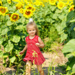 Kid holding sunflower outdoor. — Stock Photo