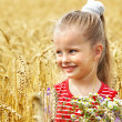 Stock Photo: Kid in wheat field.