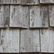 Abstract  texture of  wooden wall. - Stock Photo
