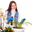 Woman looking after houseplant - Stok fotoraf