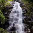 Overall Run waterfall — Stock Photo