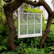 Stock Photo: Faded painted window frame in garden