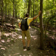 Stock Photo: Senior man hiking in forest with backpack