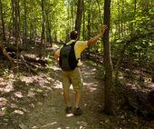 高级男子在森林里背着背包徒步旅行 — 图库照片