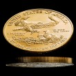 Macro image of gold eagle coin — Stock Photo