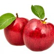 Two red apples with leaves — Stock Photo #5805056