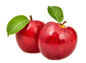 Two red apples with leaves — Stock Photo