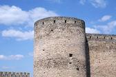 La forteresse. — Photo