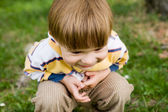 Portrait of happy laughing little boy. — Stockfoto