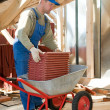 Builder roofer and wheel barrow with clay tile - Stock Photo
