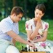 Chess game outdoors — Stock Photo #5913405