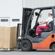 Warehouse worker driver in forklift — Stock Photo #6117007