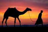Silhouette of Arab with camel at sunrise — Stock Photo