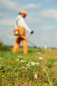 Grass trimmer works concept — Stock Photo