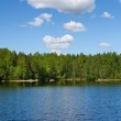 Forests tranquil lake and evergreen trees on the shore — Stock Photo #6490008