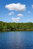 Forests tranquil lake and evergreen trees on the shore — Stock Photo