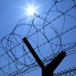 Stock Photo: Security Fence