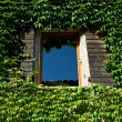 Foto de Stock  : Window