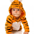 Royalty-Free Stock Photo: Tiger baby