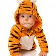 Stock Photo: Tiger baby