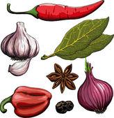 Spice. Onion, garlic, pepper, bay leaf, hot pepper — Stock Vector