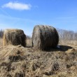 Two haystacks — Stock Photo