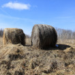 Two haystacks — Foto Stock