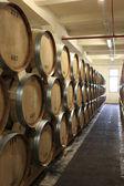 Tuns i vingården — Stockfoto