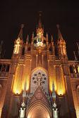 Catholic Cathedral at night — Zdjęcie stockowe