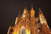 Römisch-katholische kathedrale — Stockfoto