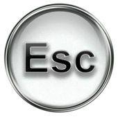 Esc icon grey — Stock Photo