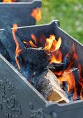 Barbecue in the garden — Stock Photo