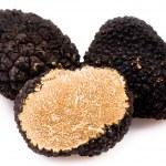 trufas negras — Foto de Stock
