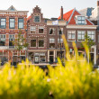 Haarlem — Stock Photo