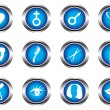 Stock Vector: Set of twelve blue buttons