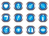Set of twelve blue buttons — 图库矢量图片