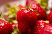 Fresh strawberry — Stock Photo