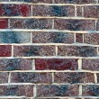 Brick wall texture — Stock Photo #6292953