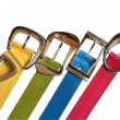 Stock Photo: Colored Belts Set