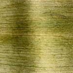 Texture — Stock Photo #5531168